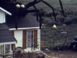 The Giant Spider Invasion image